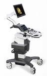 эхограф на платформе, компактный / для эхографии в акушерстве и гинекологии / для урологической эхографии / черно-белый