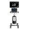 ультразвуковой сканер на платформе, компактныйCBit 9CHISON Medical Technologies