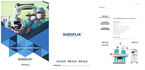 3D Surgical Visualization System