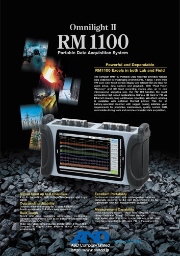 RM1100